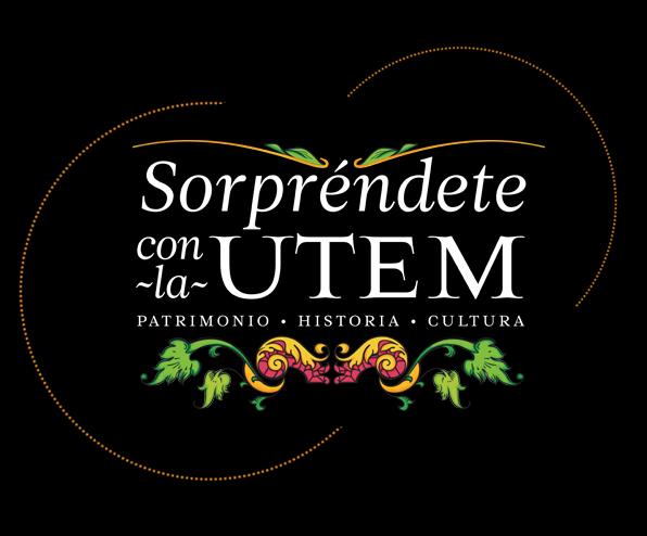 dia del patrimonio utem 2013